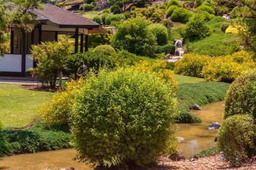 Japanese Gardens - Cowra